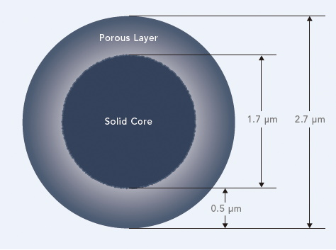 Fused-core particle